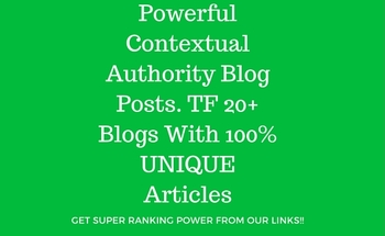Small powerful contextual authority blog posts. tf 20%2b blogs with 100  unique articles