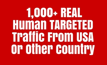 Small 1000  targeted traffic