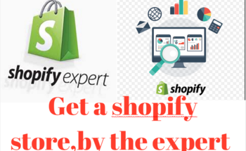 Small fiverr shopify1