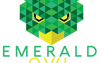 Small emerald owl 01