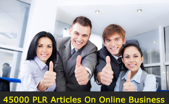 Small 45000 plr articles on online business