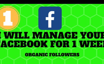 Small i will manage your social media for 1 week  1