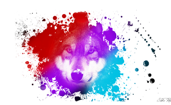 Small wolf paint
