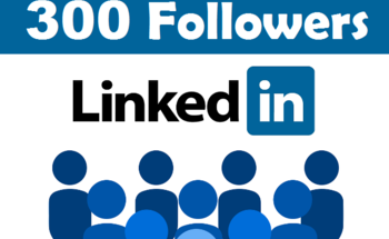 Small 300 linkedin followers