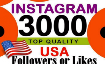 Small give you 3k  guaranteed instagram real followers  2
