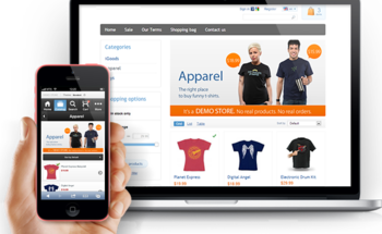 Small ecommerce web development