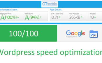 Small website pagespeed optimization speed