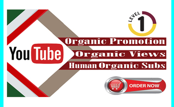 Small i will viral youtube promotion video marketing youtube music video organically views