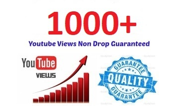 Small youtube views   1000  real human youtube views  greatest quality  cheapest price