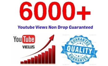 Small 6000  organic high quality youtube video views  special limited offer