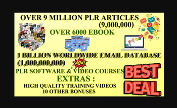 Small plr  article  make money  make money online  done for you  sales funnel
