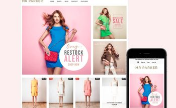 Small ecommerce shopify parker theme