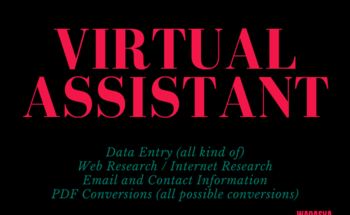 Small i will be your virtual assistant for data entry and web research and all pdf conversion